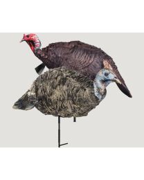 Purr-fect Pair 3D Turkey Decoys